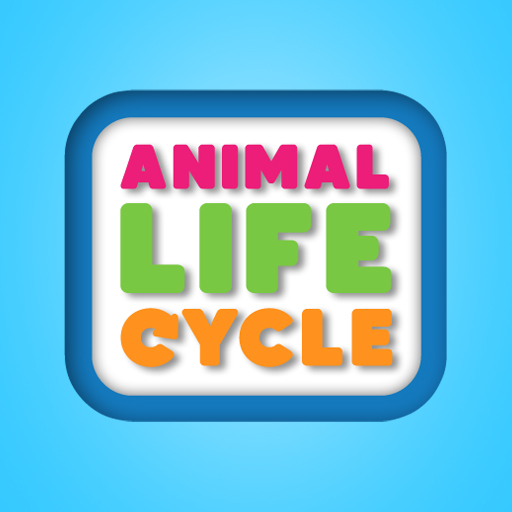 Animal Life Cycle